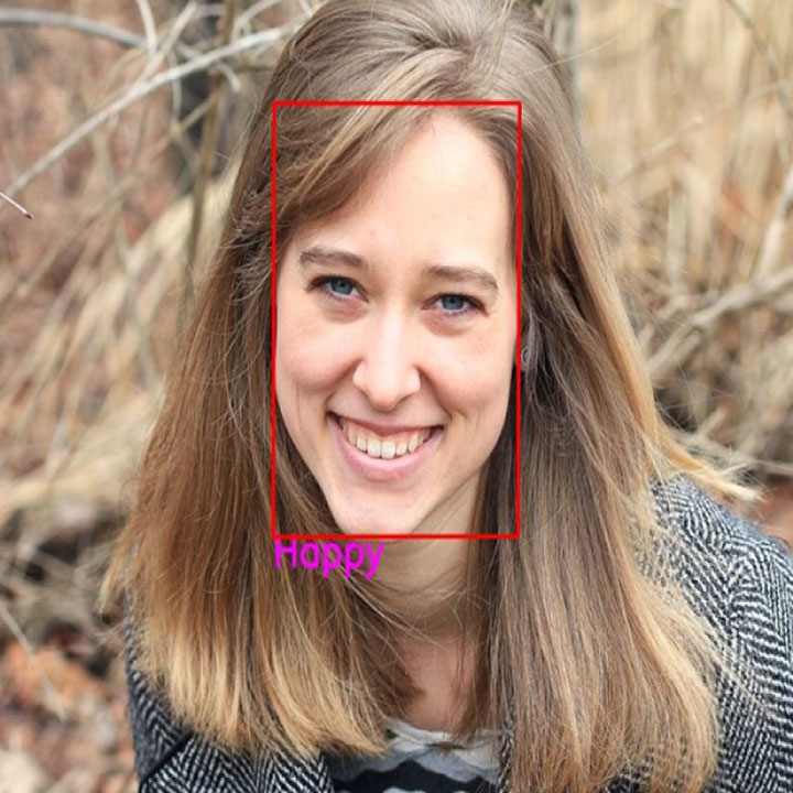 Face Emotion Recognition using CNN OpenCV and Python
