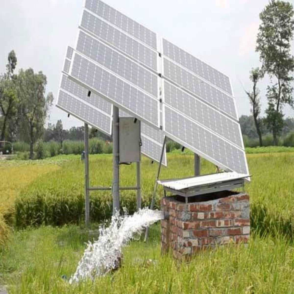 Solar Pv Water Pumping Solution using Three Level Cascaded Inverter Connected Induction Motor Drive