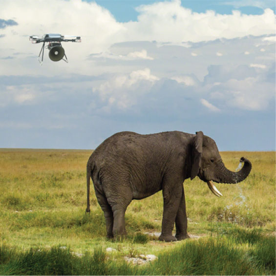 Wild life monitoring safety and security system using opencv and raspberry pi