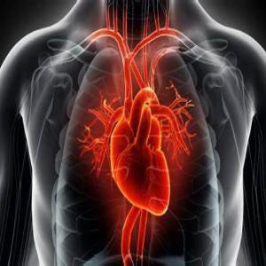 Cardiac Image Classification using Matlab