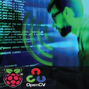 Google Pi using Raspberry Pi 1