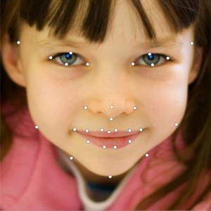 Matlab Code for Facial Landmark Detection 1