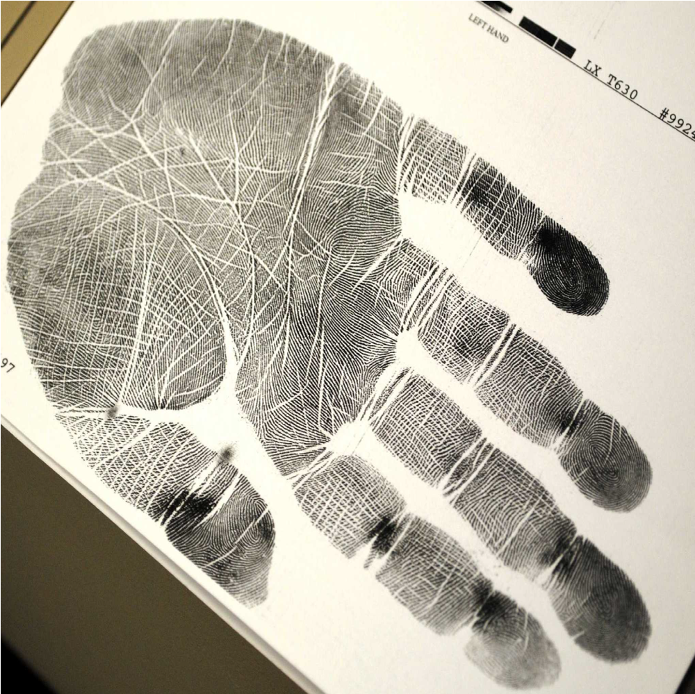 Palmprint recognition using Deep Learning