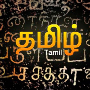 Tamil character recognition using Deep learning